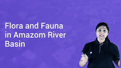 Flora and Fauna in Amazom River Basin