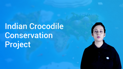 Indian Crocodile Conservation Project