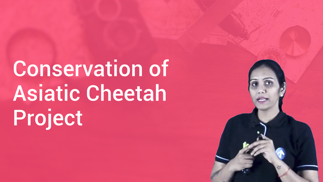 Conservation of Asiatic Cheetah Project