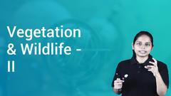 Vegetation & Wildlife - II